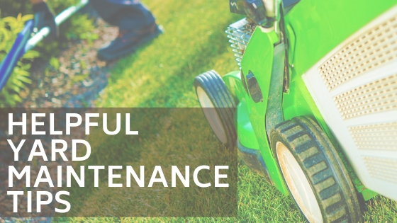 Helpful Yard Maintenance Tips